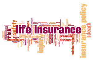 Instant Life Insurance Quotes for Life Insurance Awareness Month